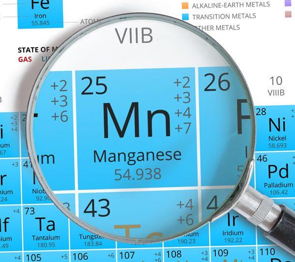 Iron & Manganese